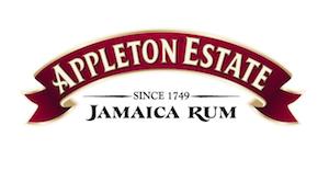 Consulting Appleton